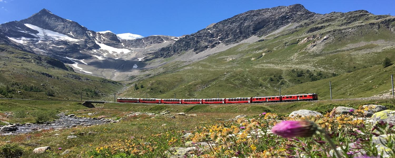 Bernina in summer